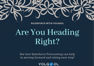 Salesforce Forecasting Feature